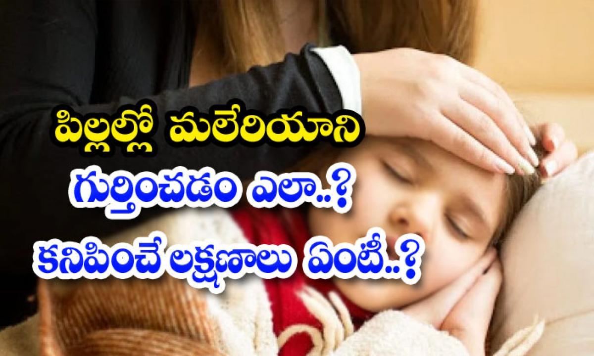 What Are The Symptoms Of Malaria In Kids-పిల్లల్లో మలేరియాని గుర్తించడం ఎలా.. కనిపించే లక్షణాలు ఏంటీ..-Latest News - Telugu-Telugu Tollywood Photo Image-TeluguStop.com