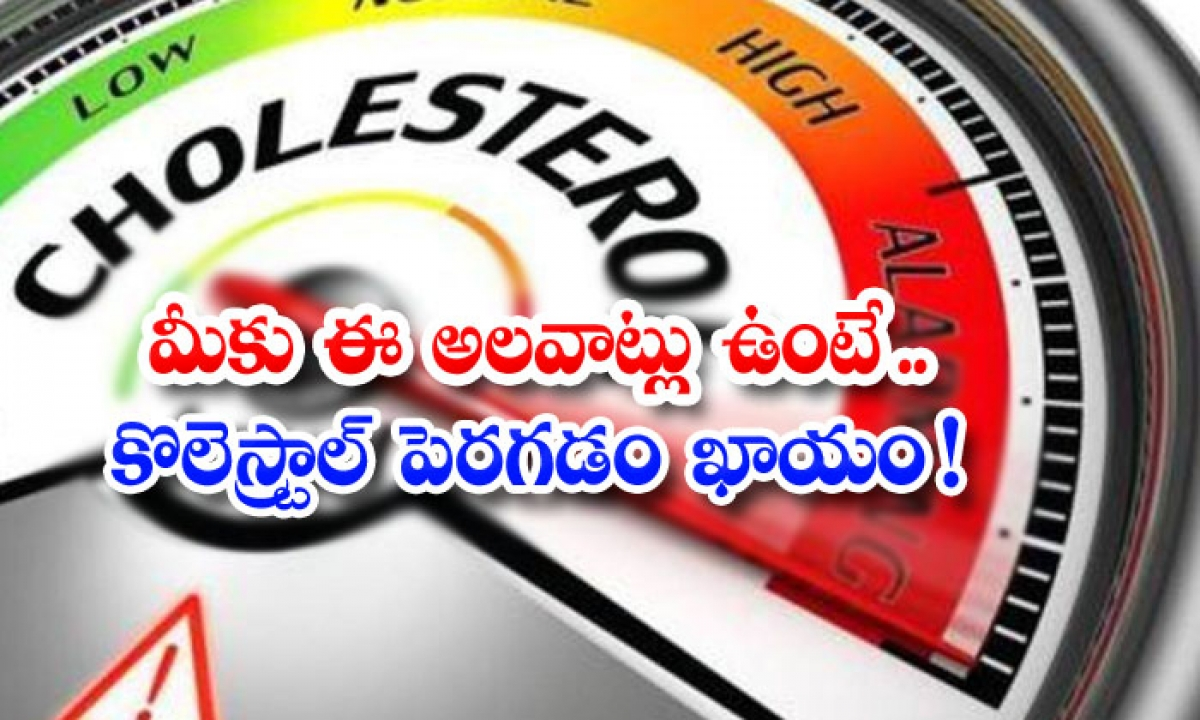 These Habits That Increase Cholesterol-మీకు ఈ అలవాట్లు ఉంటే.. కొలెస్ట్రాల్ పెరగడం ఖాయం-Latest News - Telugu-Telugu Tollywood Photo Image-TeluguStop.com
