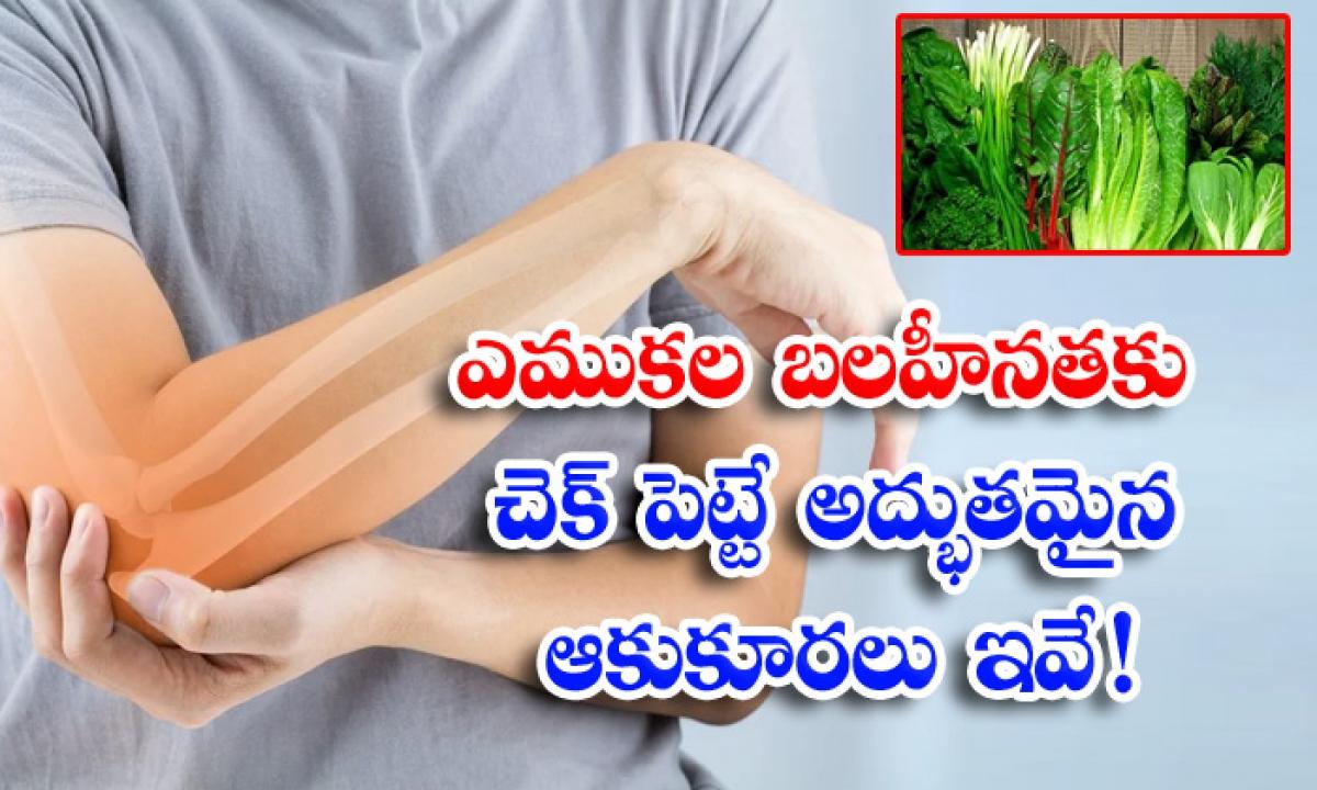 Leafy Vegetables Benefits Of Leafy Vegetables Bone Health Bones-ఎముకల బలహీనతకు చెక్ పెట్టే అద్భుతమైన ఆకుకూరలు ఇవే-Latest News - Telugu-Telugu Tollywood Photo Image-TeluguStop.com