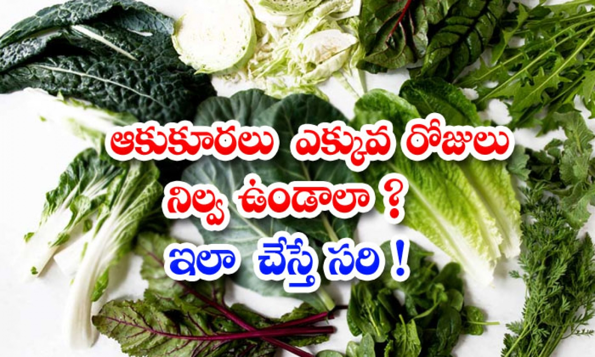 What To Do If The Leafy Vegetables Need To Be Stored For More Days-ఆకుకూరలు ఎక్కువ రోజులు నిల్వ ఉండాలా ఇలా చేస్తే సరి-Latest News - Telugu-Telugu Tollywood Photo Image-TeluguStop.com