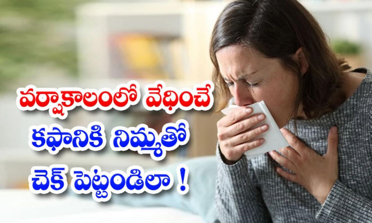 Lemon Helps To Get Rid Of Sputum Problem-వర్షాకాలంలో వేధించే కఫానికి నిమ్మతో చెక్ పెట్టండిలా-Latest News - Telugu-Telugu Tollywood Photo Image-TeluguStop.com