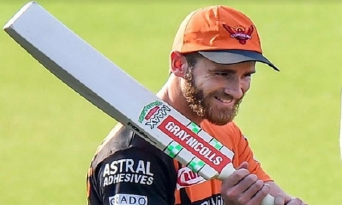Lot Of Conversations To Be Had In Srh About Warner: Williamson-TeluguStop.com