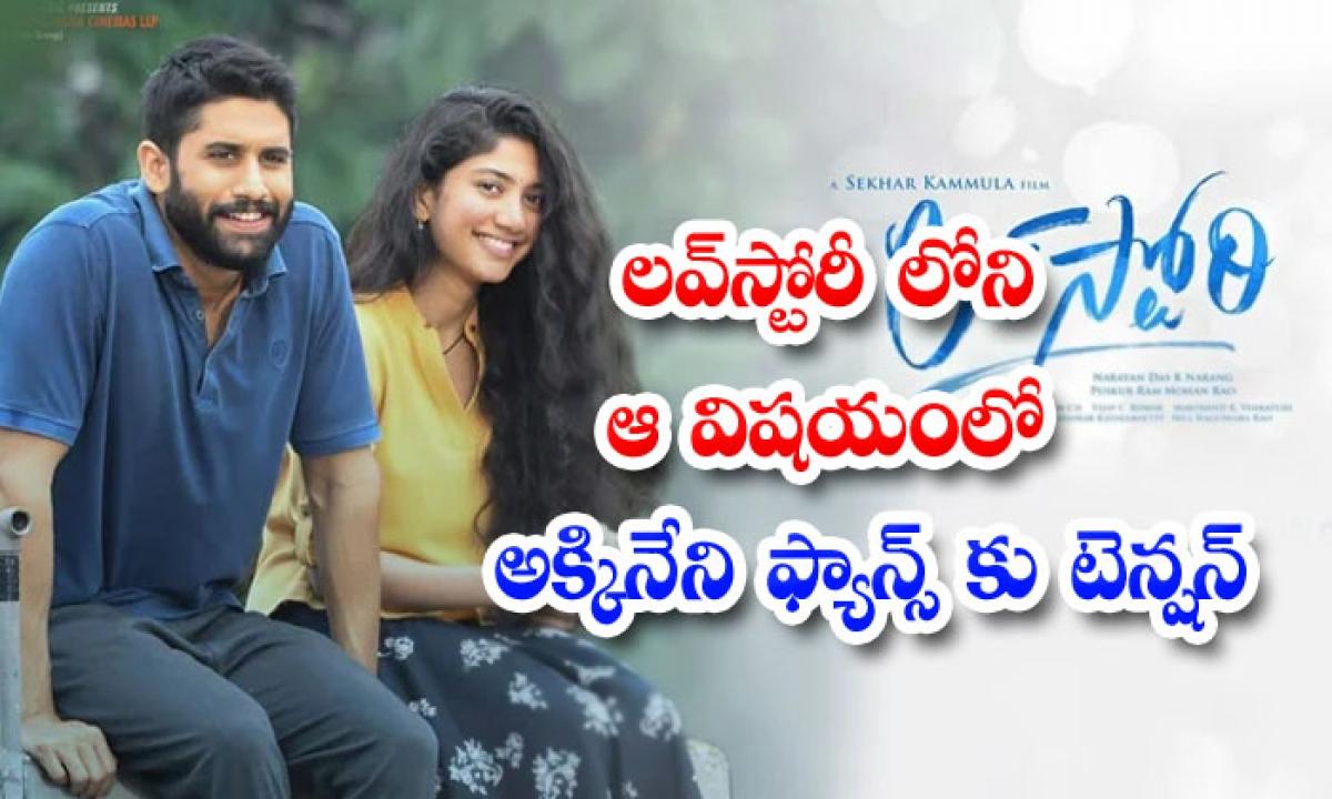Love Story Movie Anti Climax Tension In Akkineni Fans-లవ్స్టోరీలోని ఆ విషయంతో అక్కినేని ఫ్యాన్స్ కు టెన్షన్-Latest News - Telugu-Telugu Tollywood Photo Image-TeluguStop.com