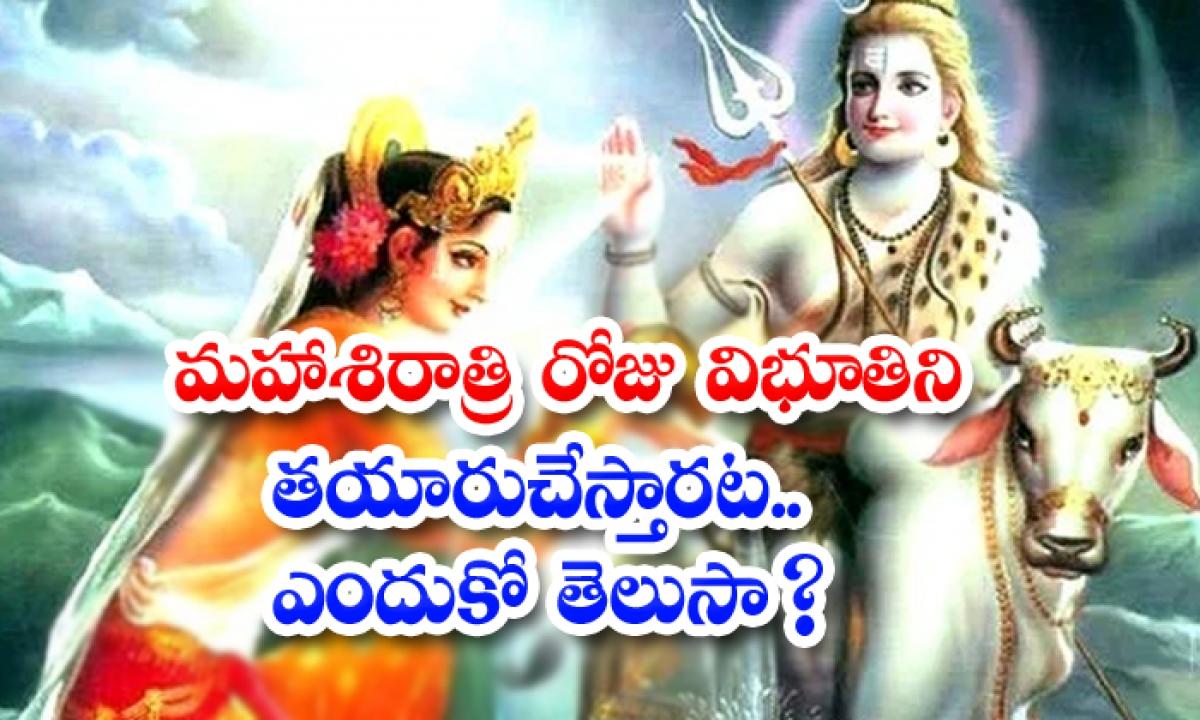 Maha Shivratri 2021 Significance Of Vibhuthi-TeluguStop.com