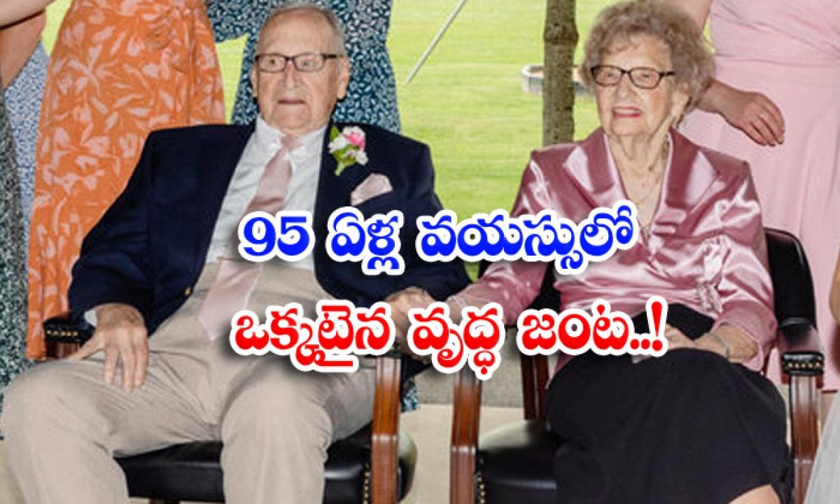 Marriage 95 New York Joy Interesting Story Viral Latest-TeluguStop.com