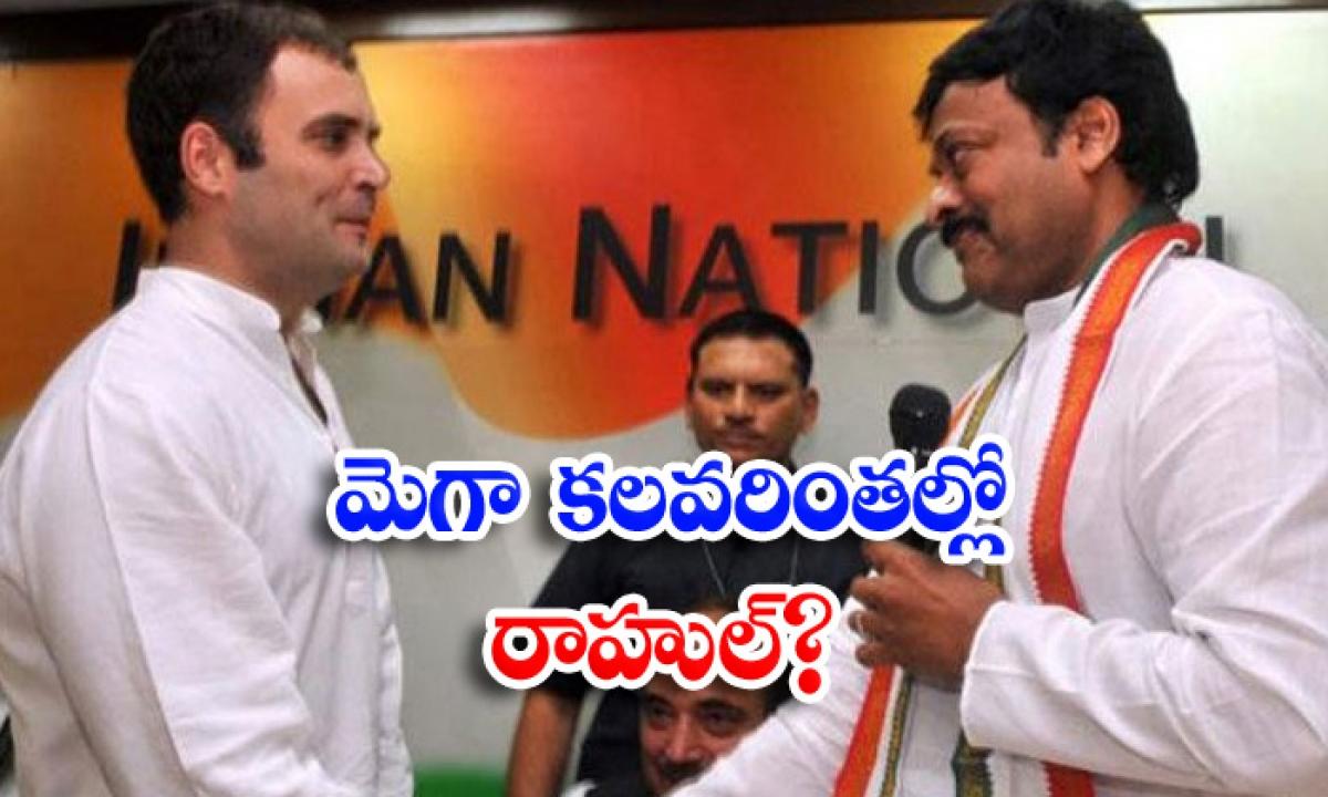 Rahul Gandi Enquiary On Chiranjivi Issue-మెగా కలవరింతల్లో రాహుల్ -Political-Telugu Tollywood Photo Image-TeluguStop.com