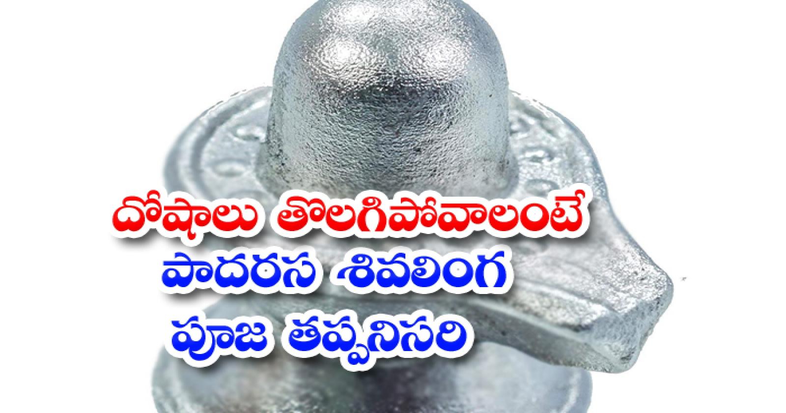 Consequences Of Worshiping Mercury Shivalinga-దోషాలు తొలగిపోవాలంటే పాదరస శివలింగం పూజ తప్పనిసరి-Latest News - Telugu-Telugu Tollywood Photo Image-TeluguStop.com