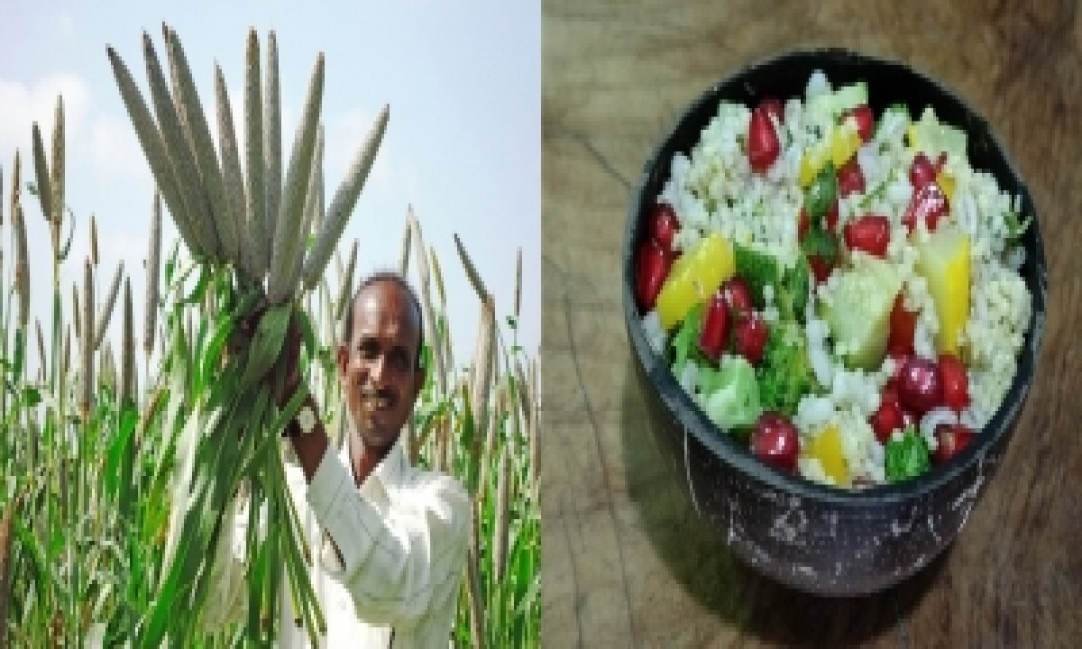 Millet-based Diet Can Lower Risk Of Type 2 Diabetes: Study-TeluguStop.com