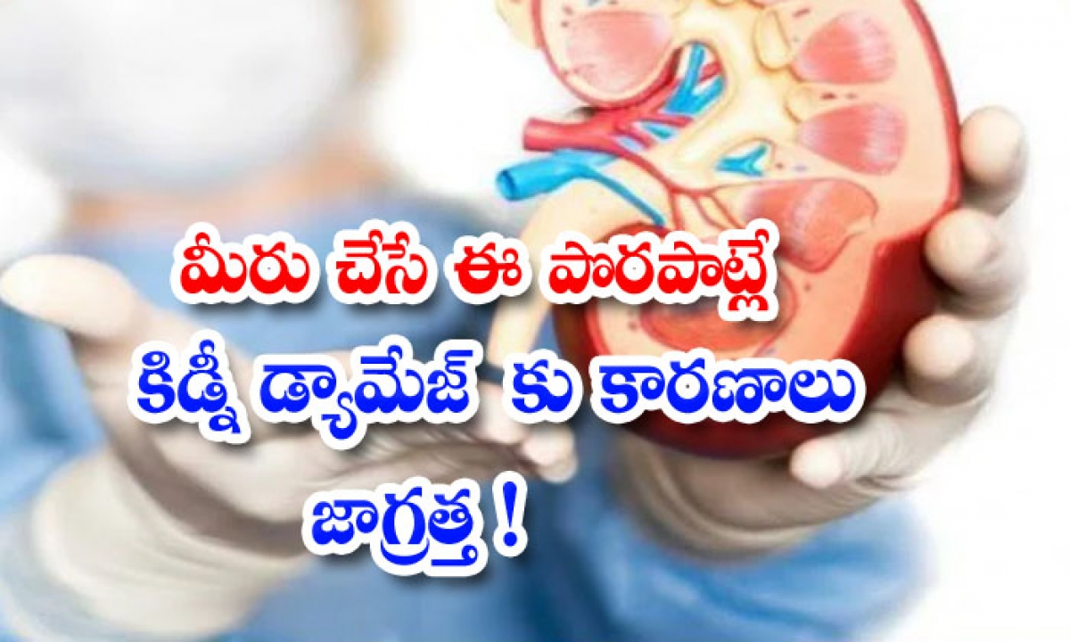 Mistakes Damage Kidneys Kidney Damage Kidney Health-మీరు చేసే ఈ పొరపాట్లే కిడ్నీ డ్యామేజ్కు కారణాలు..జాగ్రత్త-Latest News - Telugu-Telugu Tollywood Photo Image-TeluguStop.com
