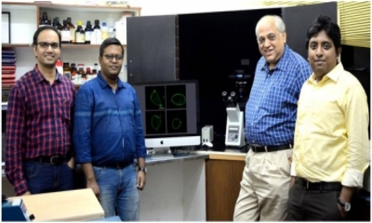 Molecular Sensor On Serotonin Receptor To Detect Cholesterol-TeluguStop.com