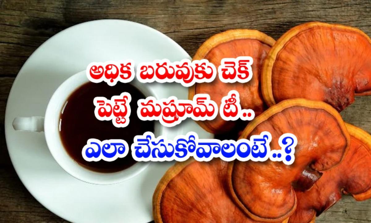 Benefits Of Mushroom Tea Can Reduce Over Weight-అధిక బరువుకు చెక్ పెట్టే మష్రూమ్ టీ..ఎలా చేసుకోవాలంటే-Latest News - Telugu-Telugu Tollywood Photo Image-TeluguStop.com