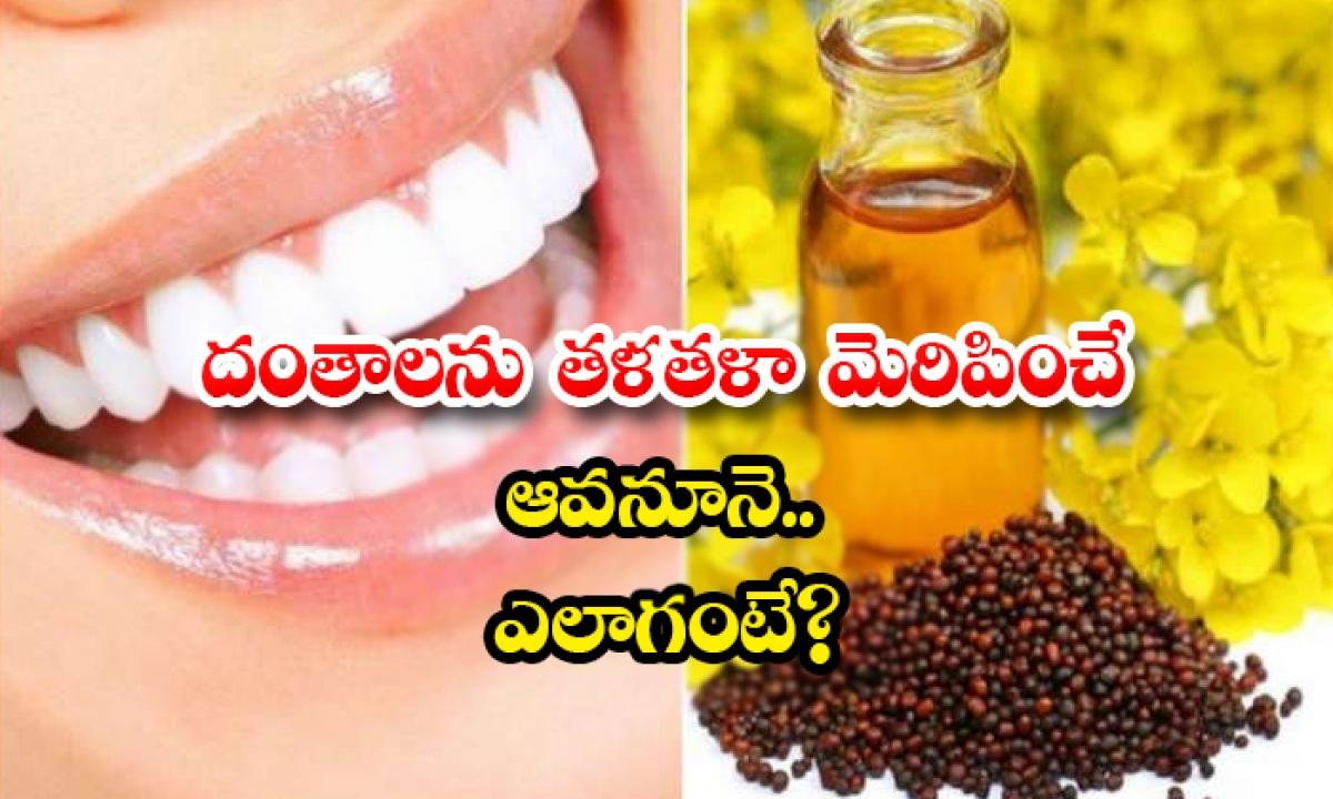Mustard Oil Helps For Teeth Whitening-దంతాలను తళతళా మెరిపించే ఆవనూనె..ఎలాగంటే-Latest News - Telugu-Telugu Tollywood Photo Image-TeluguStop.com
