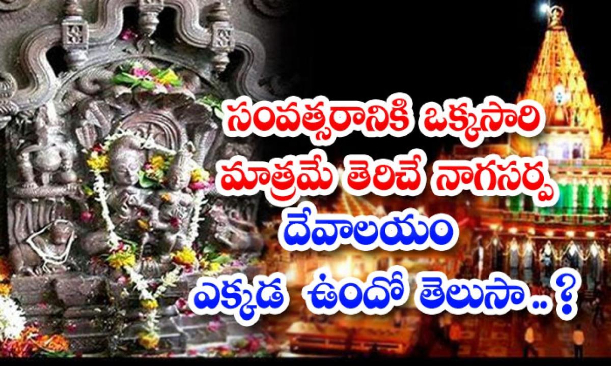 Facts About Naga Chandreshwar Templ-సంవత్సరానికి ఒక్కసారి మాత్రమే తెరిచే నాగసర్ప దేవాలయం ఎక్కడ ఉందో తెలుసా..-Latest News - Telugu-Telugu Tollywood Photo Image-TeluguStop.com