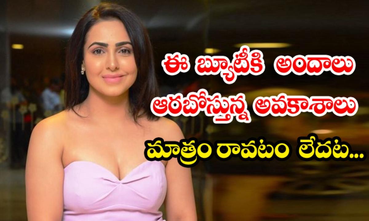 Big Boss Beauty Nandini Rai Waiting For Movie Offers Telugu-ఈ బ్యూటీకి అందాలు ఆరబోస్తున్న అవకాశాలు మాత్రం రావటం లేదట…-Latest News - Telugu-Telugu Tollywood Photo Image-TeluguStop.com