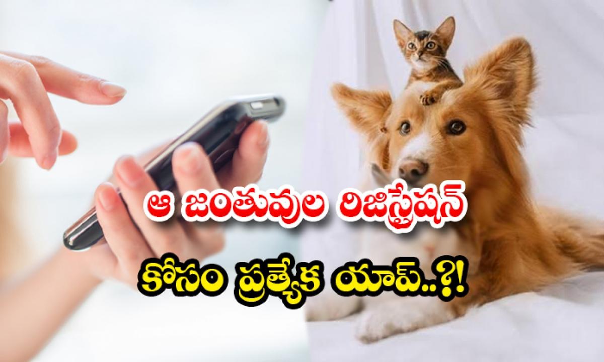 Noida Officers Launched Pet Registration App-ఆ జంతువుల రిజిస్ట్రేషన్ కోసం ప్రత్యేక యాప్..-General-Telugu-Telugu Tollywood Photo Image-TeluguStop.com