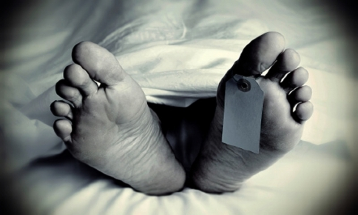 Octogenarian Dies After Violent Scuffle With Wife In Andhra-TeluguStop.com