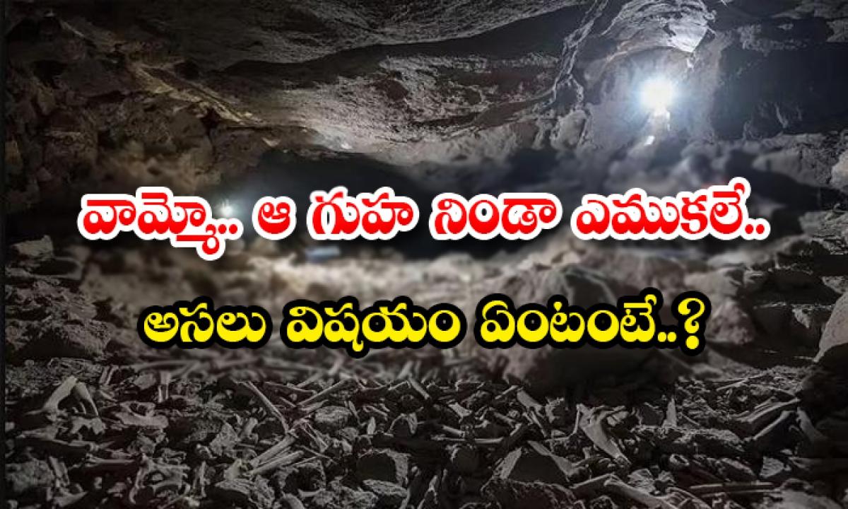 Oh My God Bone From That Cave What Is The Real Thing-వామ్మో.. ఆ గుహనిండా ఎముకలే.. అసలు విషయం ఏంటంటే..-General-Telugu-Telugu Tollywood Photo Image-TeluguStop.com