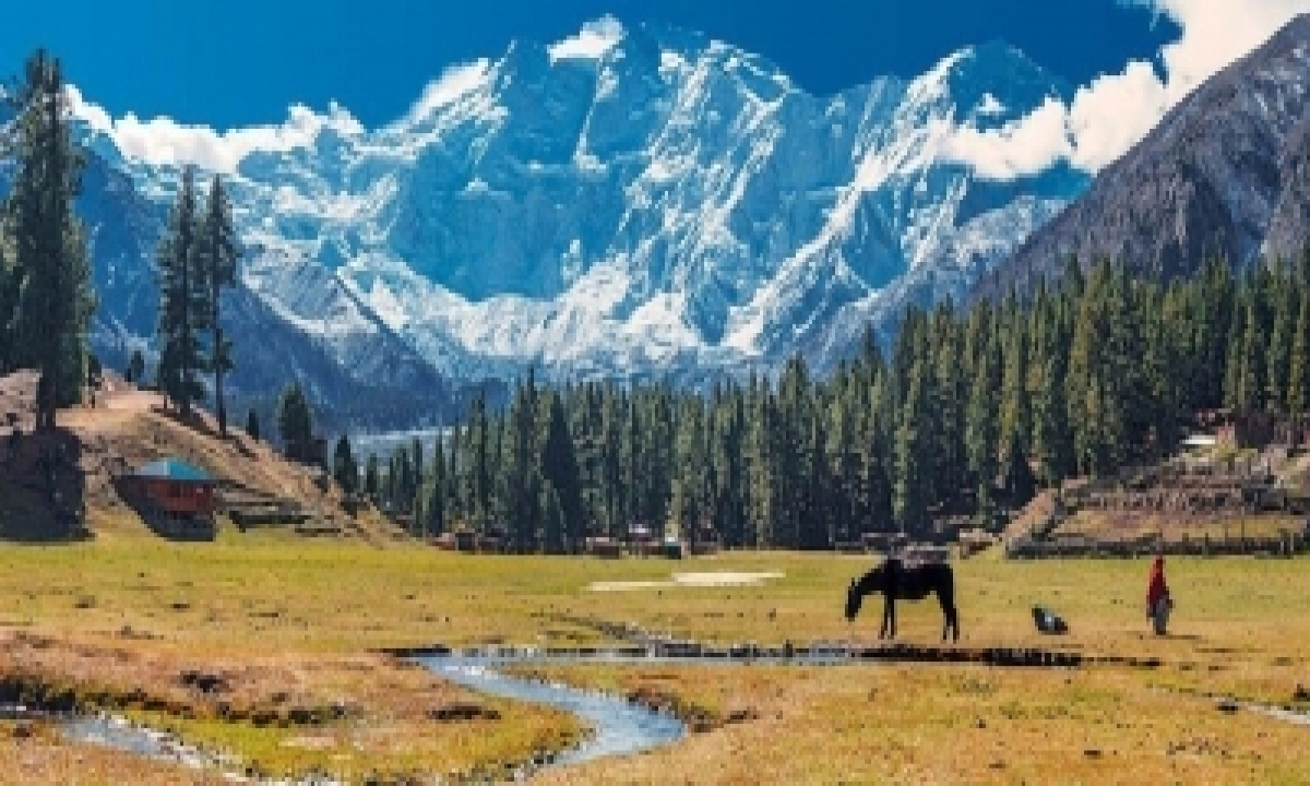 Pak Aims To Setup Special Economic Zone In Gilgit-baltistan-TeluguStop.com