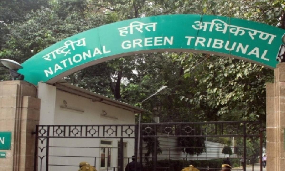 Panel Urges Ngt Not To Permit Stone Crushers In Haryana' Mahendergarh – Delhi | India News | National,environment/wildlife-TeluguStop.com