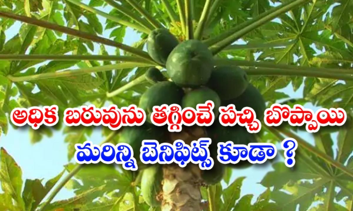 Green Papaya Helps To Weight Loss-TeluguStop.com