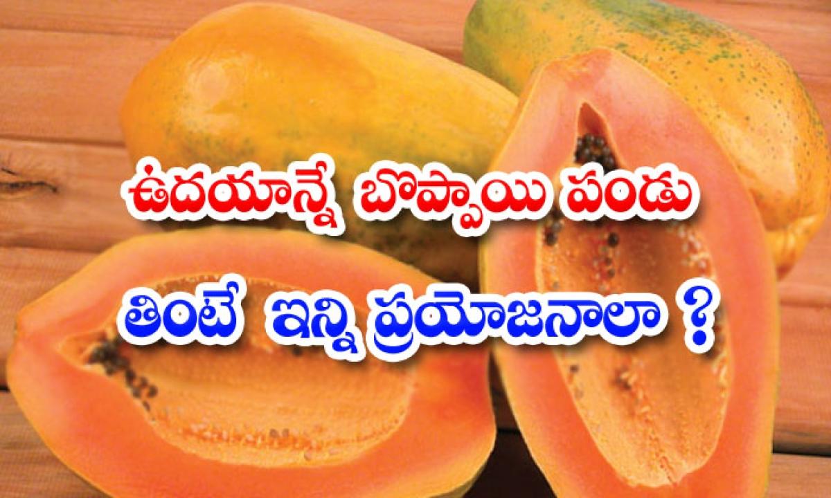 Papaya Health Benefits Vitamins-ఉదయాన్నే బొప్పాయి పండు తింటే ఇన్ని ప్రయోజనాలా-Telugu Health - తెలుగు హెల్త్ టిప్స్ ,చిట్కాలు-Telugu Tollywood Photo Image-TeluguStop.com