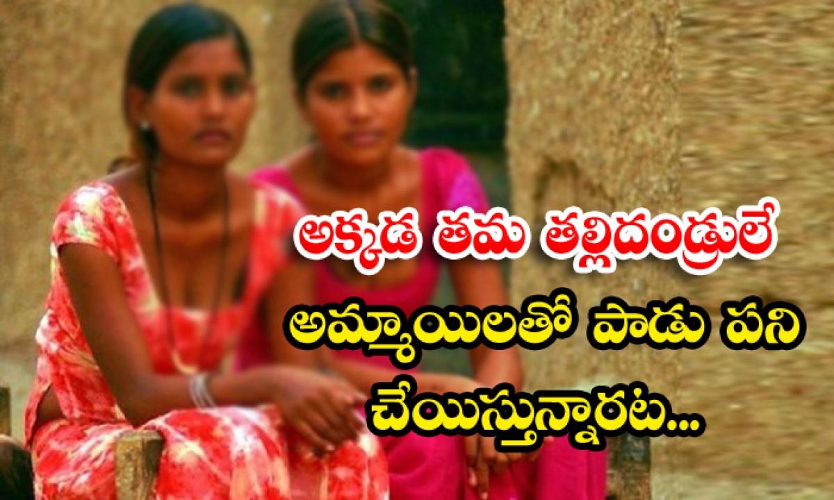 Parents Encouraging Prostitution In Madhya Pradesh Village-అక్కడ తమ తల్లిదండ్రులే అమ్మాయిలతో పాడు పని చేయిస్తున్నారట…-Latest News - Telugu-Telugu Tollywood Photo Image-TeluguStop.com