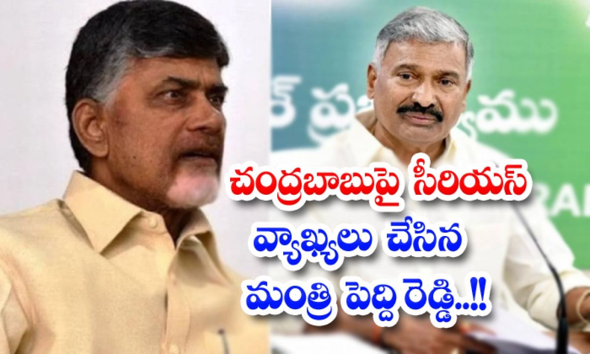Minister Peddireddy Serious Comments On Chandrababu-TeluguStop.com