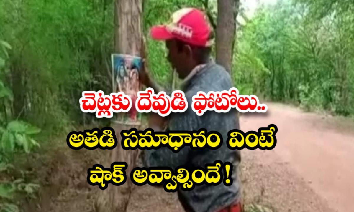 Activist Pastes Photos Of Lord Shiva On Trees To Save Them From Being Axed-చెట్లకు దేవుడి ఫోటోలు.. అతడి సమాధానం వింటే షాక్ అవ్వాల్సిందే -General-Telugu-Telugu Tollywood Photo Image-TeluguStop.com