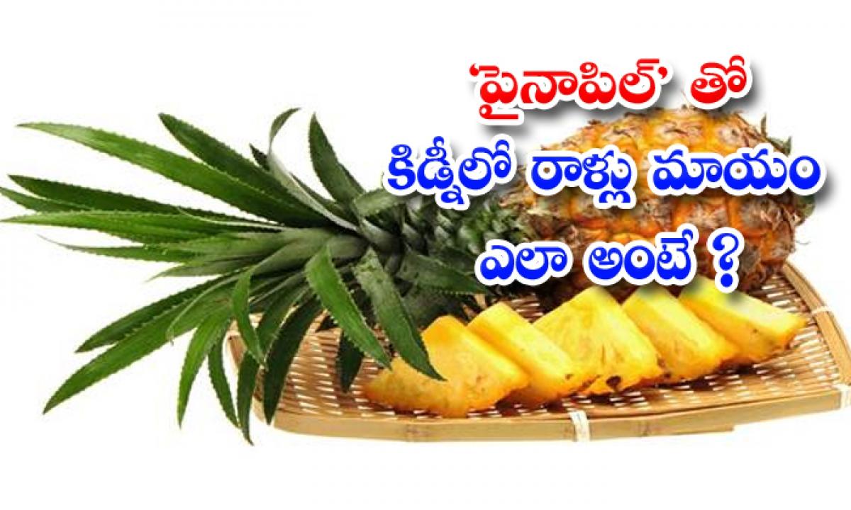 Pineapple Will Kill Kidney Stones-పైనాపిల్'తో కిడ్నీలో రాళ్లు మాయం.. ఎలా అంటే-Latest News - Telugu-Telugu Tollywood Photo Image-TeluguStop.com