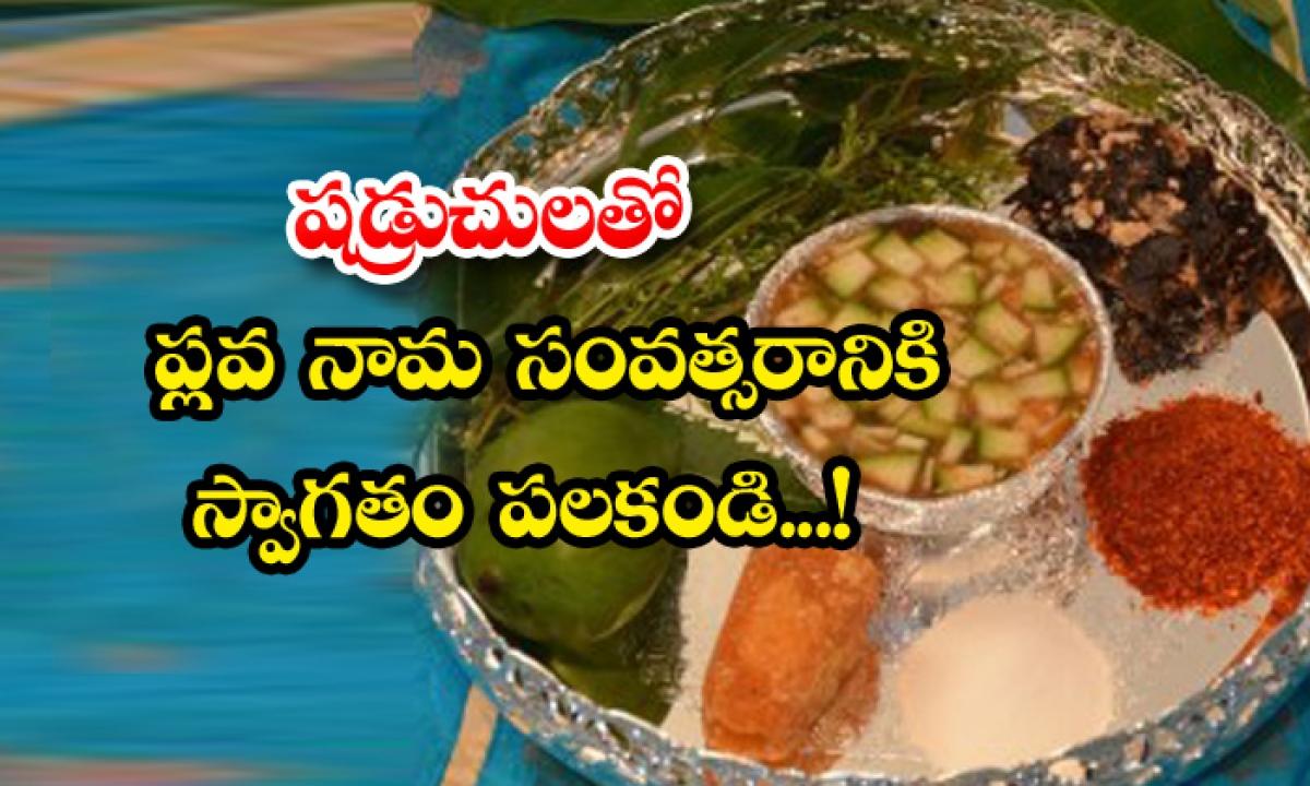 Welcome To Plava Nama Year With Shadruchs-TeluguStop.com