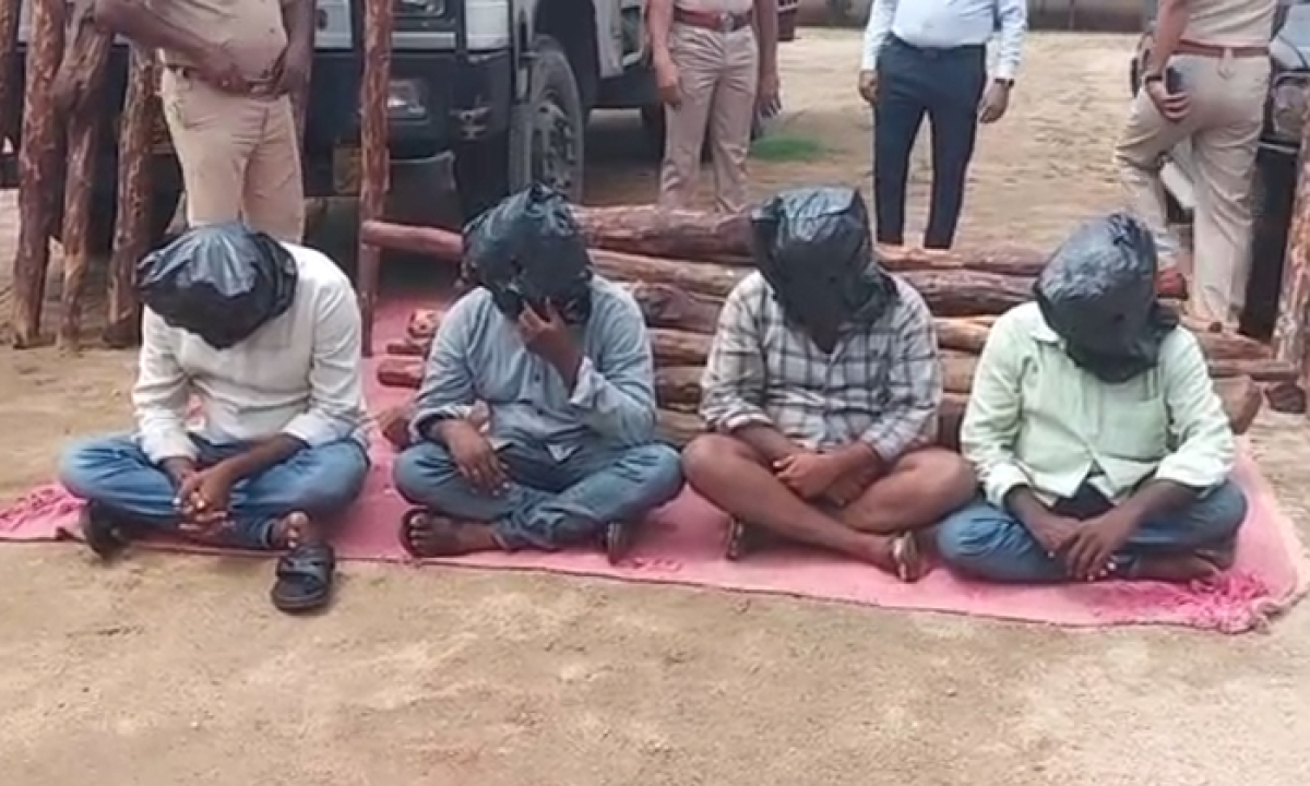 The Police Arrest Red Sandal Smuggler In Chittoor-రెడ్ శాండిల్ స్మగ్లర్ ని అరెస్ట్ చేసిన చిత్తూరు జిల్లా పోలీసులు-Latest News - Telugu-Telugu Tollywood Photo Image-TeluguStop.com
