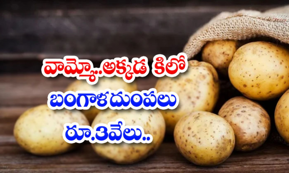 There Are 3 Thousand Rupees Per Kilo Of Potatoes-వామ్మో.. అక్కడ కిలో బంగాళాదుంపలు రూ.3వేలు..-General-Telugu-Telugu Tollywood Photo Image-TeluguStop.com