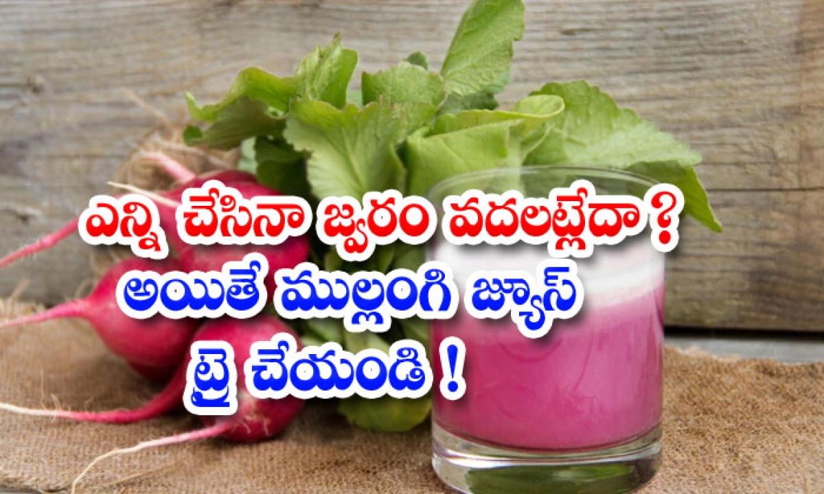 Radish Juice Helps To Get Rid Of Fever Naturally-ఎన్ని చేసినా జ్వరం వదలట్లేదా అయితే ముల్లంగి జ్యూస్ ట్రై చేయండి-Latest News - Telugu-Telugu Tollywood Photo Image-TeluguStop.com