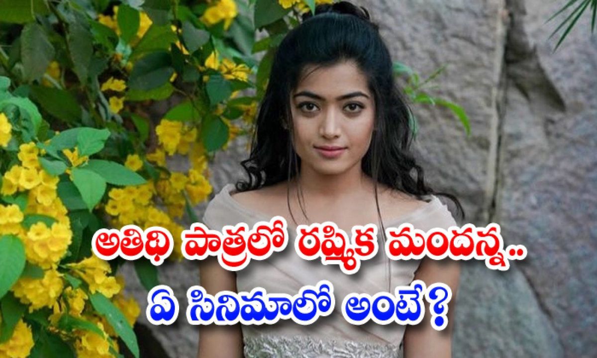 Rashmika Mandanna Doing Guest Role In Bollywood Movie-అతిథి పాత్రలో రష్మిక మందన్న.. ఏ సినిమాలో అంటే-Latest News - Telugu-Telugu Tollywood Photo Image-TeluguStop.com