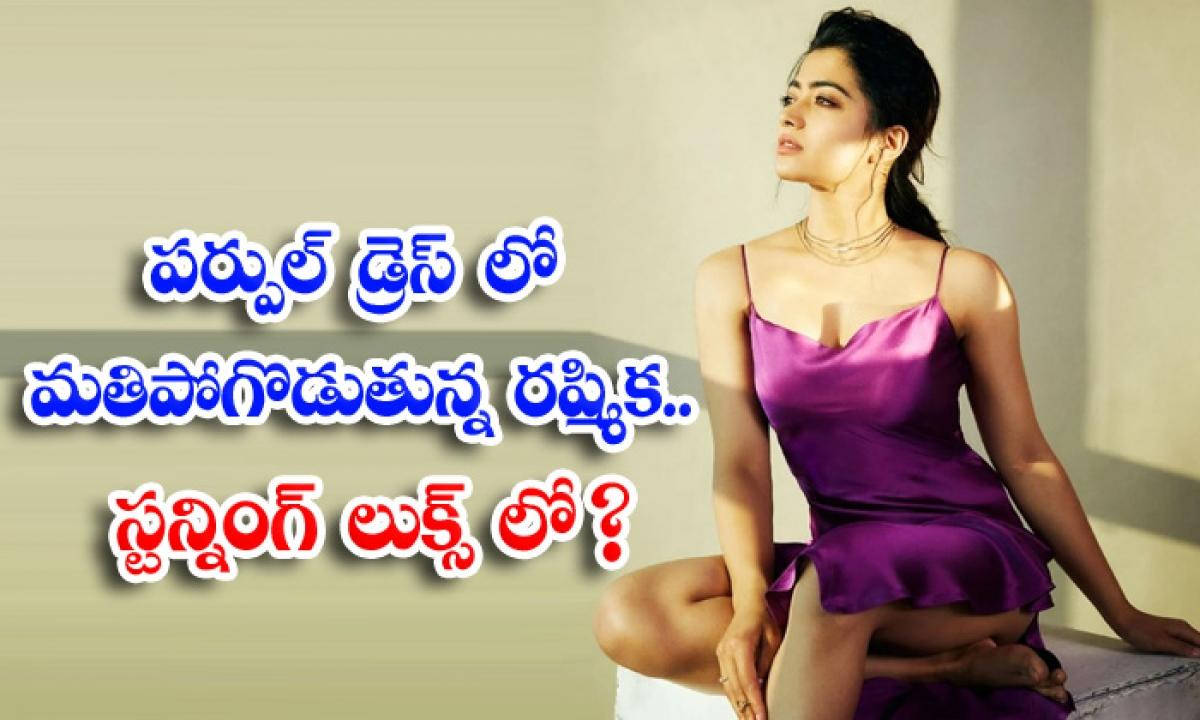 Rashmika In Purple Dress Stunning Looks-పర్పుల్ డ్రెస్ లో మతిపోగొడుతున్న రష్మిక.. స్టన్నింగ్ లుక్స్ లో-Latest News - Telugu-Telugu Tollywood Photo Image-TeluguStop.com