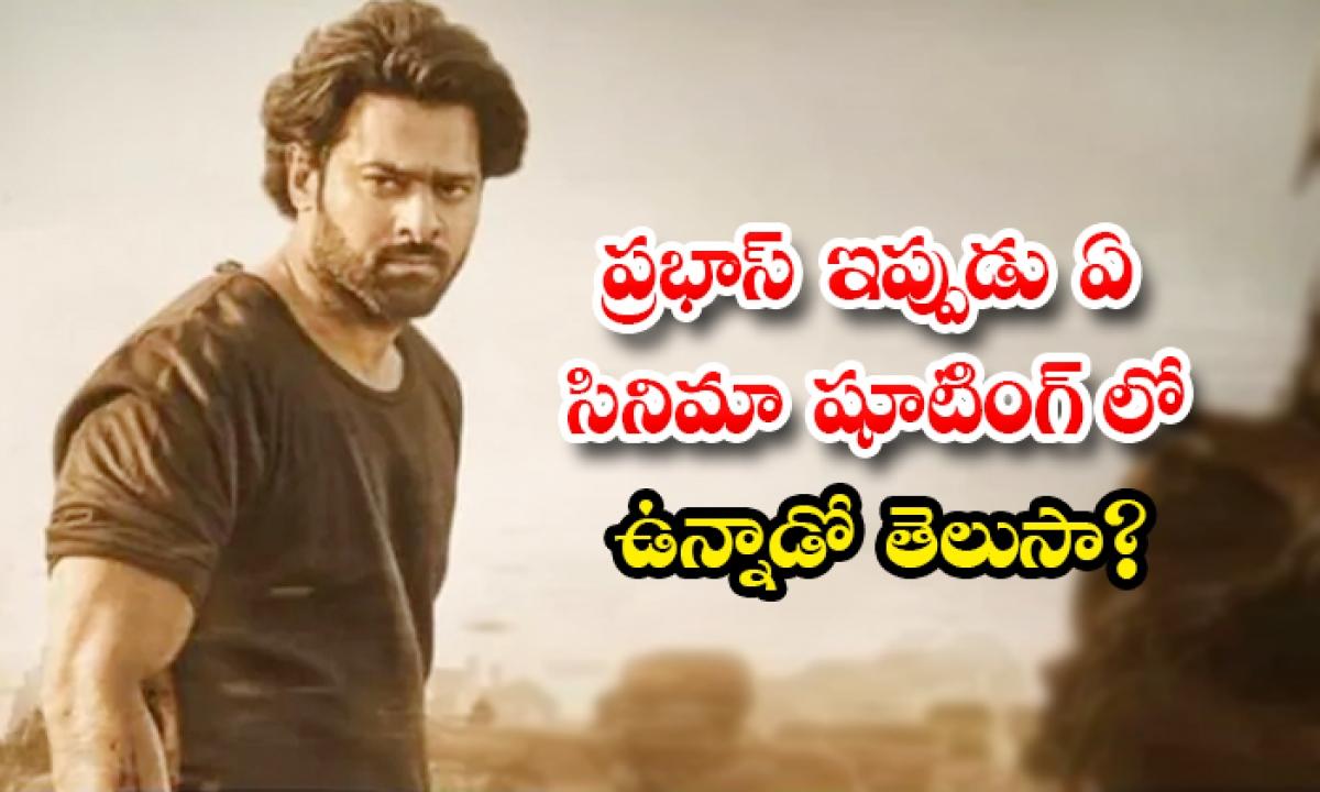 Prabhas Salaar Movie Shooting Started-ప్రభాస్ ఇప్పుడు ఏ సినిమా షూటింగ్ లో ఉన్నాడో తెలుసా-Latest News - Telugu-Telugu Tollywood Photo Image-TeluguStop.com