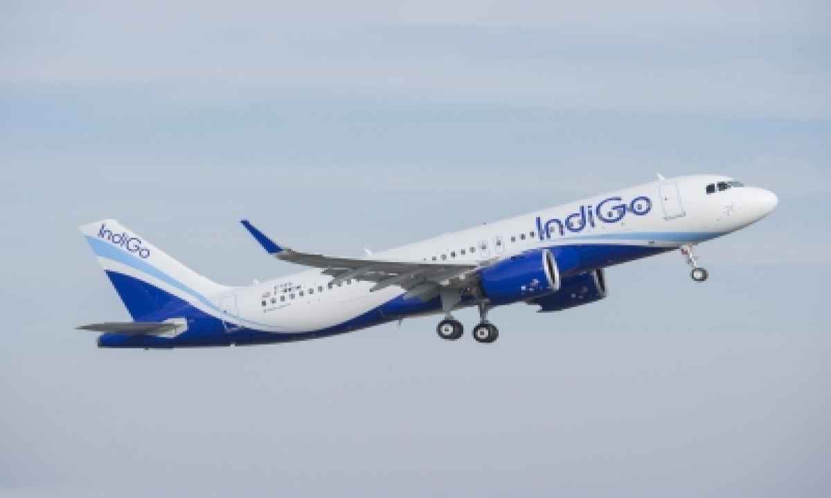 Recovery Flight: Airlines Gear Up To Deploy More Capacity As Traffic Rises (ians Special)-TeluguStop.com