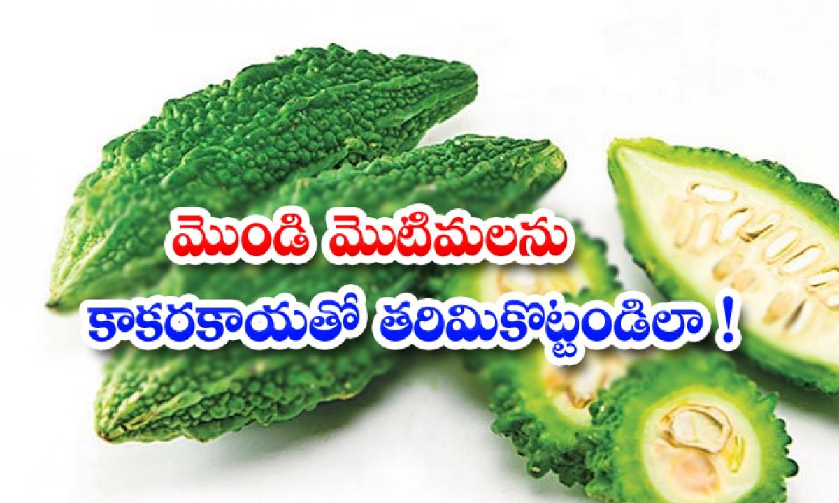 Bitter Gourd Helps To Reduce Pimples-మొండి మొటిమలను కాకరకాయతో తరిమికొట్టండిలా-Latest News - Telugu-Telugu Tollywood Photo Image-TeluguStop.com