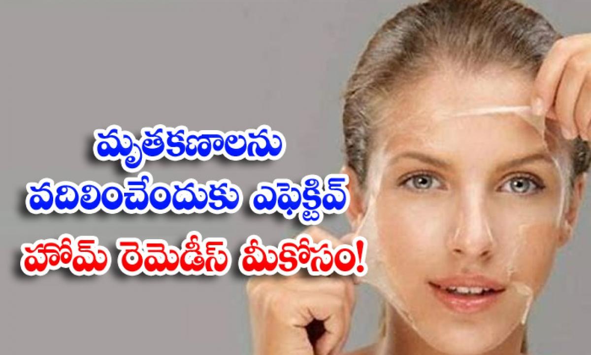Remove Dead Skin Cells Dead Skin Cells Home Remedies-మృతకణాలను వదిలించేందుకు ఎఫెక్టివ్ హోమ్ రెమెడీస్ మీకోసం-Latest News - Telugu-Telugu Tollywood Photo Image-TeluguStop.com