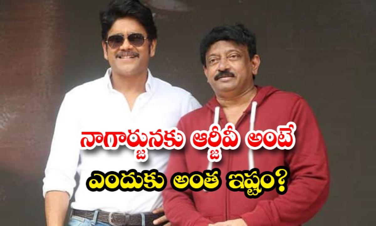 Rgv And Nagarjuna Unknown Facts-TeluguStop.com