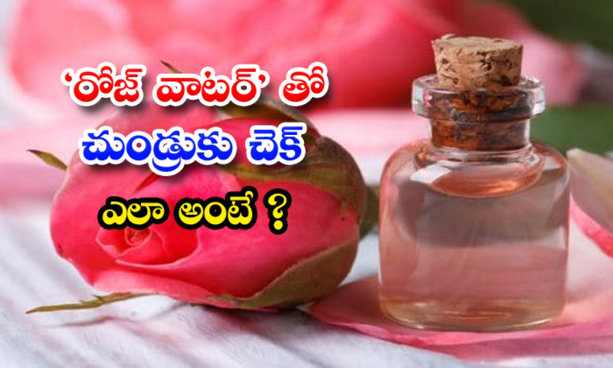 Check For Dandruff With Rose Water How Is That-TeluguStop.com