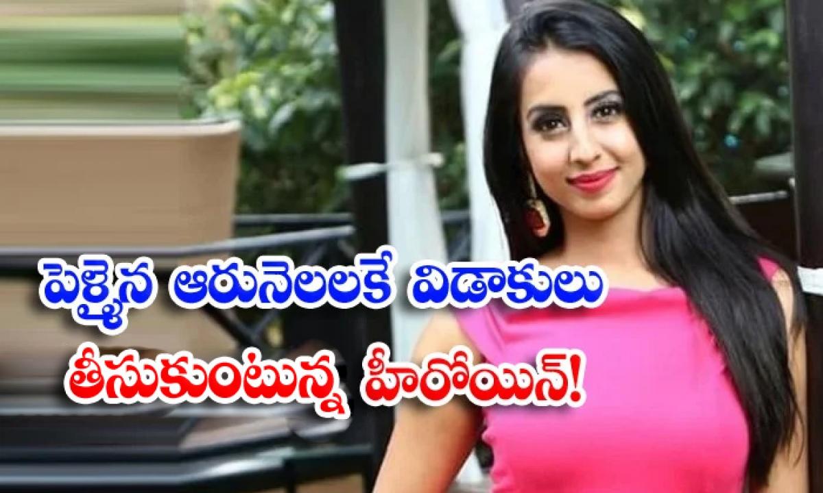 The Heroine Who Is Gettig Divorced After Six Years Of Marriage-పెళ్ళైన ఆరునెలలకే విడాకులు తీసుకుంటున్న హీరోయిన్-Latest News - Telugu-Telugu Tollywood Photo Image-TeluguStop.com