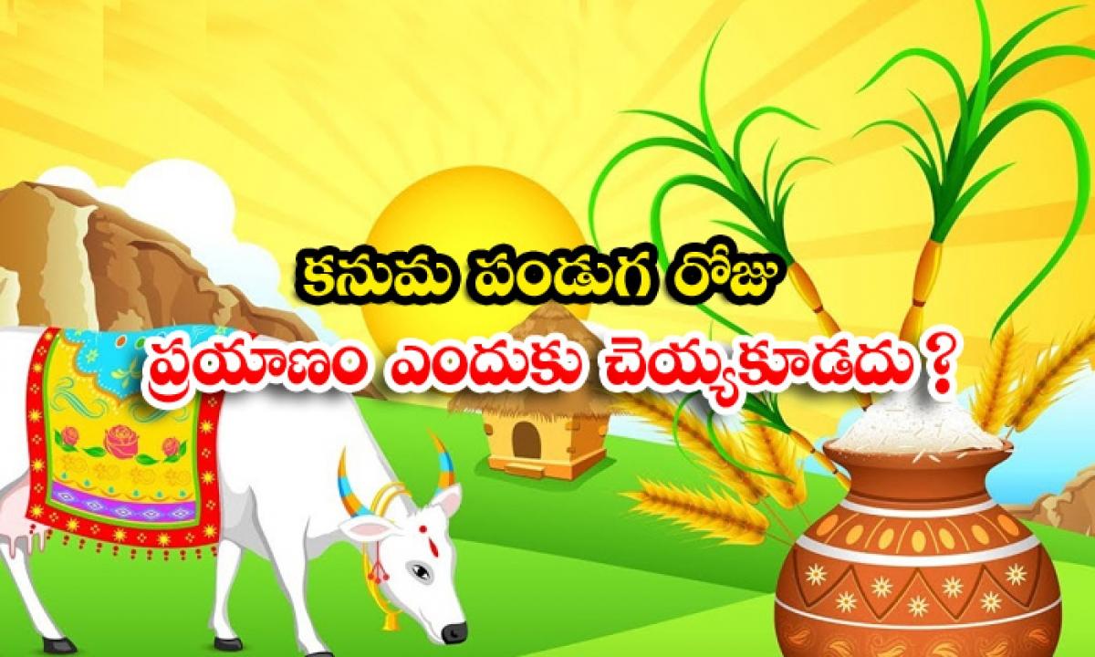 Why Do Not Travel On Kanuma Festival-కనుమ పండుగ రోజు ప్రయాణం ఎందుకు చెయ్యకూడదు-Latest News - Telugu-Telugu Tollywood Photo Image-TeluguStop.com