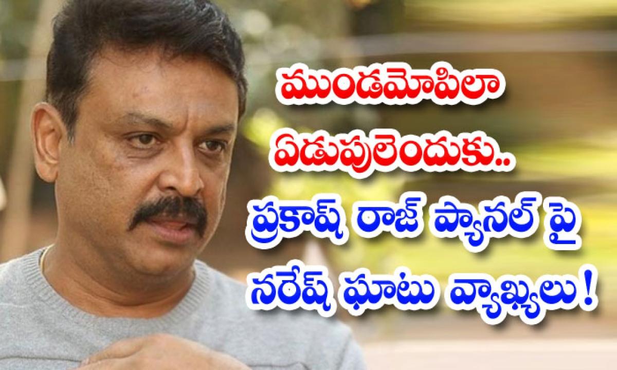 Senior Naresh Shocking Comments About Resigning Members-ముండమోపిలా ఏడుపులెందుకు.. ప్రకాష్ రాజ్ ప్యానల్ పై నరేష్ ఘాటు వ్యాఖ్యలు-Latest News - Telugu-Telugu Tollywood Photo Image-TeluguStop.com