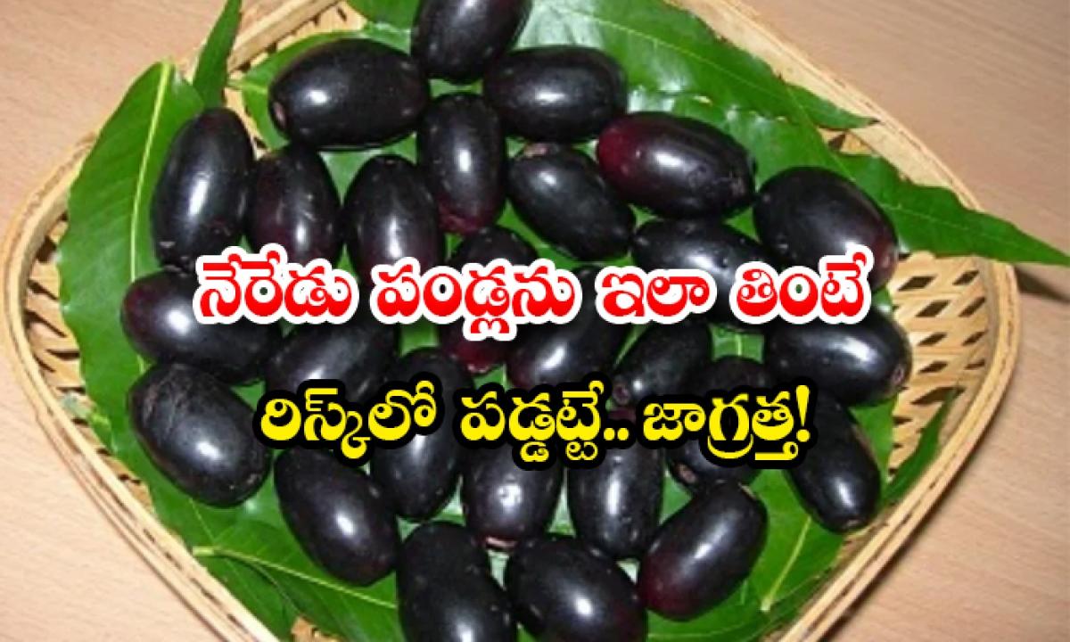 Side Effects Of Eating Jamun Fruit Overly-నేరేడు పండ్లను ఇలా తింటే రిస్క్లో పడ్డట్టే..జాగ్రత్త-Latest News - Telugu-Telugu Tollywood Photo Image-TeluguStop.com