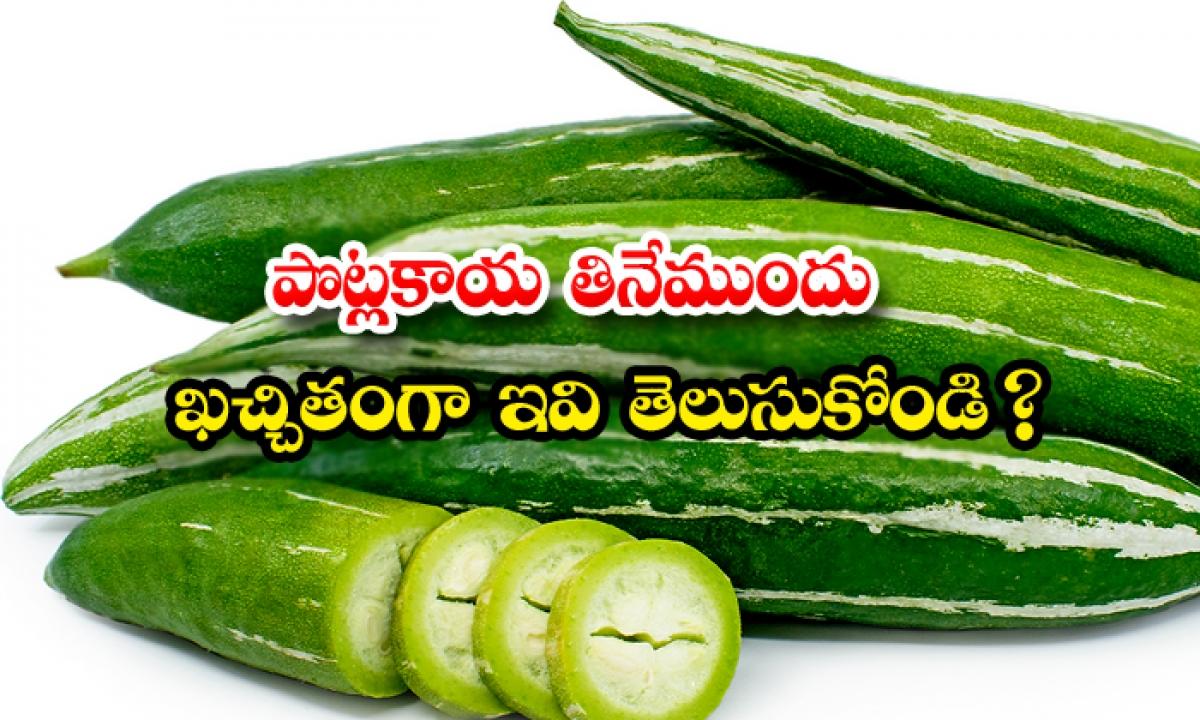 Health Benefits Of Snake Gourd-పొట్లకాయ తినేముందు ఖచ్చితంగా ఇవి తెలుసుకోండి-Latest News - Telugu-Telugu Tollywood Photo Image-TeluguStop.com