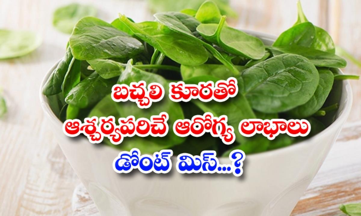 Wonderful Health Benefits Of Spinach-TeluguStop.com