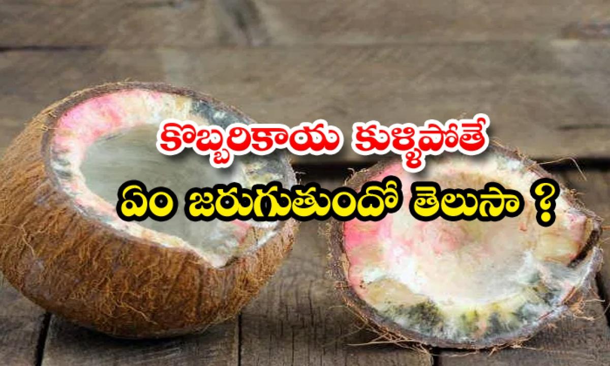 Spoiled Coconut Appears When Break It Before God-కొబ్బరికాయ కుళ్ళిపోతే ఏం జరుగుతుందో తెలుసా-Latest News - Telugu-Telugu Tollywood Photo Image-TeluguStop.com