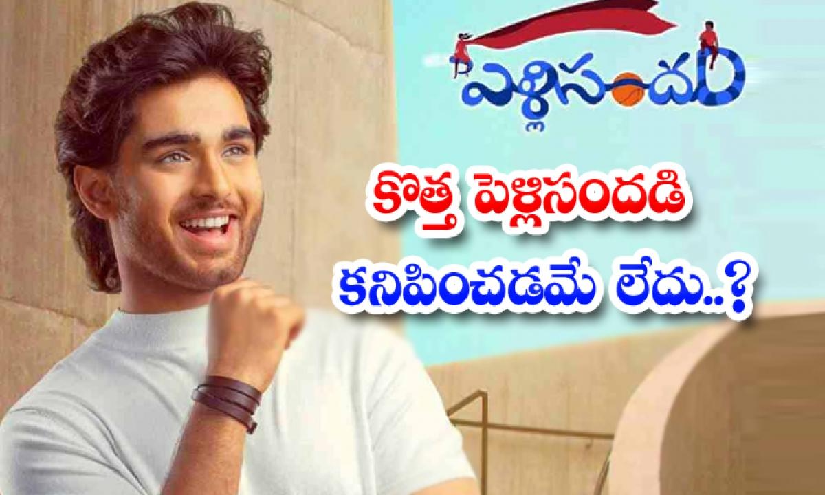 Pelli Sandadi Sequel-TeluguStop.com
