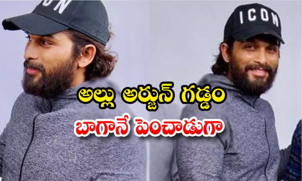 Allu Arjun Beard Look Goes Viral-వైరల్ అవుతున్నస్టైలిష్ స్టార్ గడ్డం లుక్…. బాగానే పెంచాడుగా..-Latest News - Telugu-Telugu Tollywood Photo Image-TeluguStop.com